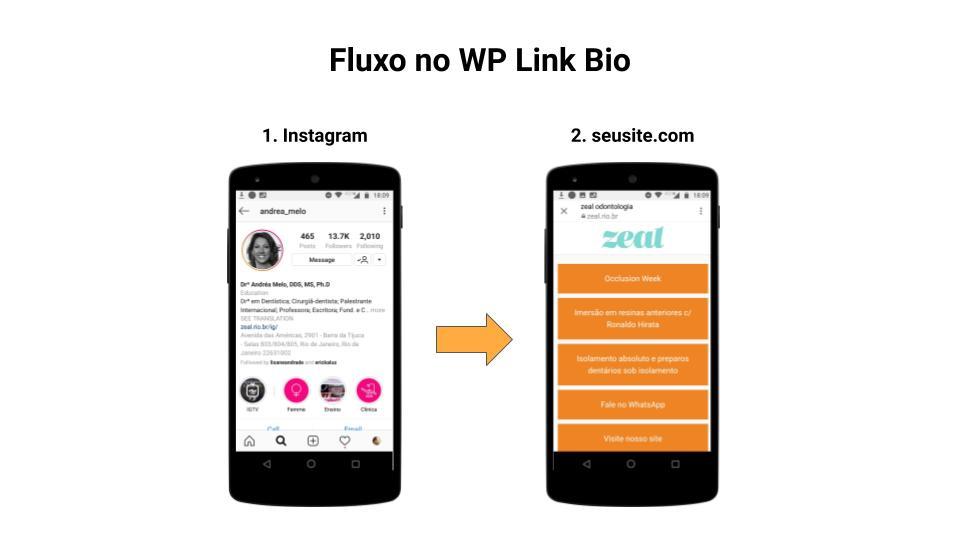 Fluxo no WP Link Bio